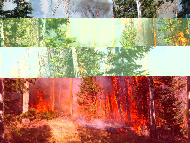 Protect your home from fires in Alberta